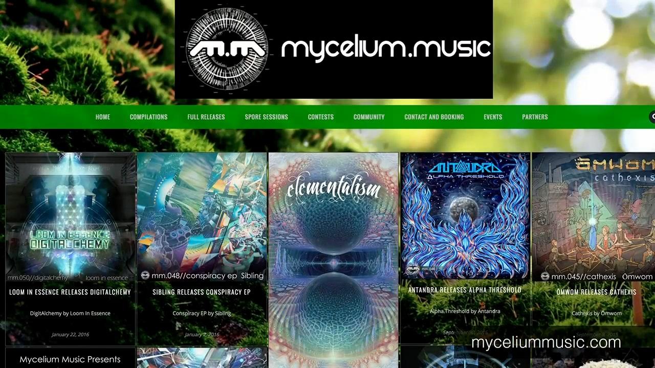 IBM InterConnect Dan Tapscott Blockchain Next Generation Internet mycelium