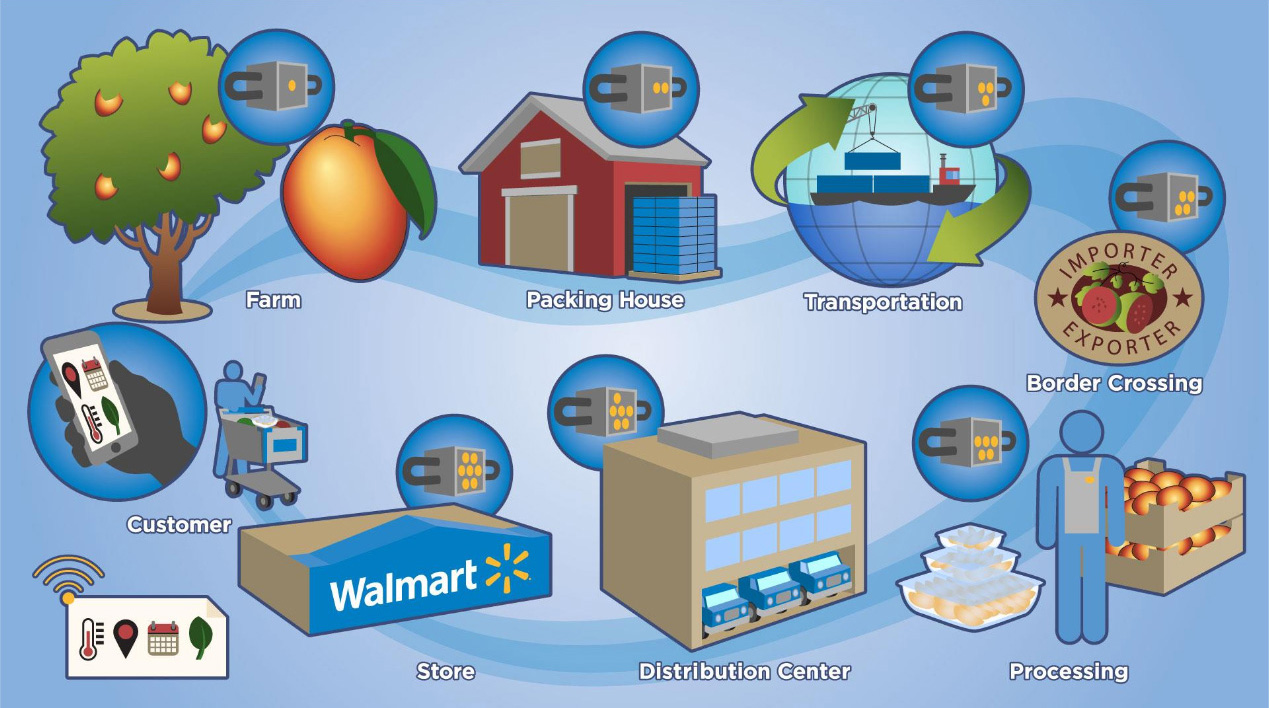 Blockchain at Walmart: Tracking Food from Farm to Fork | Altoros