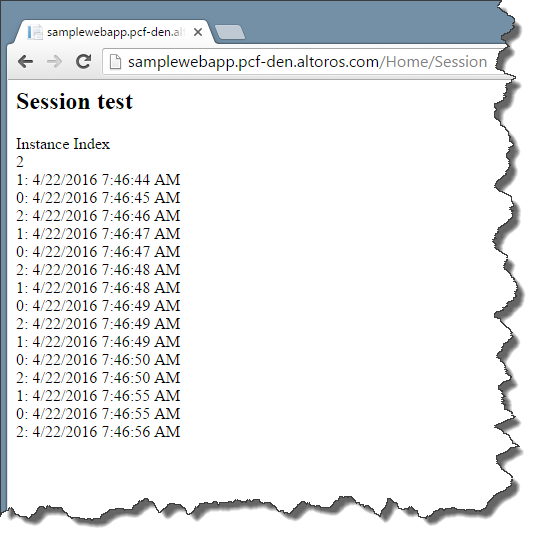 net-on-pvotal-cf-scaling-diego-session-test